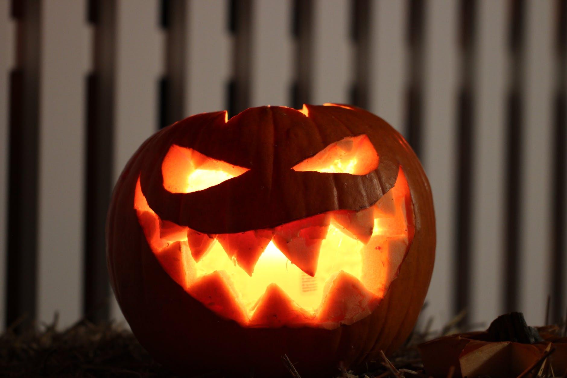 halloween-pumpkin-raw
