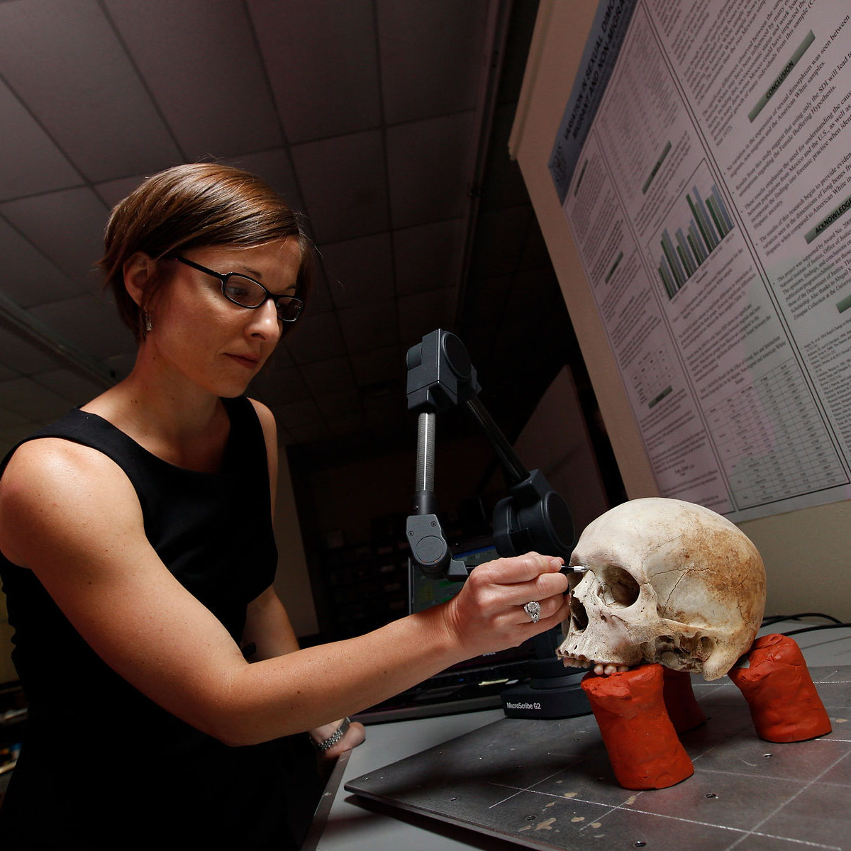 kate-spradley-digitizing-skull-with-microscribe